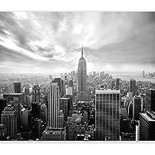 murando Carta da parati 250x175 cm Fotomurali in TNT Murale alla moda Decorazione da Muro XXL Poster Gigante Design Carta per pareti New York 101104-1