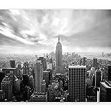 murando Carta da parati 400x280 cm Fotomurali in TNT Murale alla moda Decorazione da Muro XXL Poster Gigante Design Carta per pareti New York 101104-1