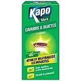 Blattes et Cafards Nuisibles Kapo