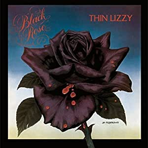 Buy Black Rose A Rock Legend Online At Low Prices In