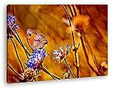 Atemberaubende Blumenwiese Format: 100x70 Effekt: Zeichnung als Leinwandbild, Motiv fertig gerahmt auf Echtholzrahmen, Hochwertiger Digitaldruck mit Rahmen, Kein Poster oder Plakat