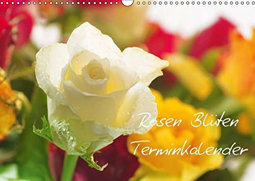 Rosen Blüten Terminkalender (Wandkalender 2018 DIN A3 quer): Ein Terminkalender in dem die Schönheit und die Vielfältigkeit der Rosen zu sehen ist ... [Kalender] [Apr 01, 2017] Riedel, Tanja