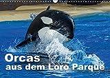 Orcas aus dem Loro Parque (Wandkalender 2017 DIN A3 quer): Faszination Orcas (Monatskalender, 14 Seiten )