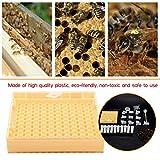155pcs apicoltura provvista di gabbie regina, attrezzature di apicoltura plastica durevole regina allevamento coppe di cellule ape box di coltivazione strumento apicoltore Attrezzature per apicoltura