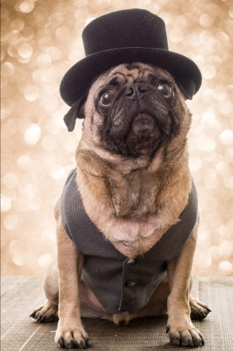 say-hello-to-the-fancy-pug-dog-in-glad-rags-journal-150-page-lined-notebook-diary