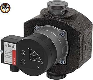 Biral - Pumpe Typ AX 13-1 Hocheffizienz Pumpe , 180 mm