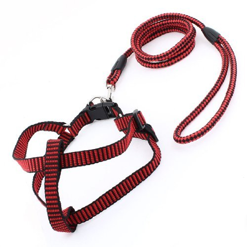 Rot Schwarz Testmuster Hummer-Haken-Design Hund Gurt Leine Größe XL (Hummer Hund Leine)