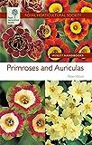 Primroses and Auriculas (Royal Horticultural Society Wisley Handbooks)