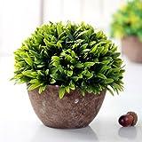 GSYLOL 1 Stück Mini Kreative Lebendige Künstliche Pflanze Topf Bonsai Dekor Hause Dekorative Für Hochzeit Büro Wohnzimmer 6 Stile, grün