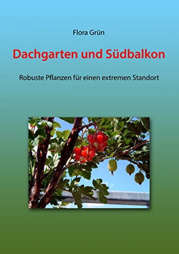 dachgarten-und-sudbalkon-robuste-pflanzen-fur-einen-extremen-standort