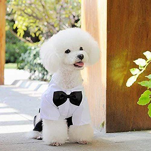 GHYSTORM Heiß! Haustier Hund Katze Kleidung Prinz Smoking Fliege Anzug Welpen Kostüm Overall Mantel - Schwarze Und Weiße Welpen Kostüm