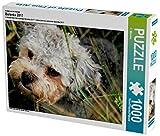 Ein Motiv aus dem Kalender Bolonka 2017 1000 Teile Puzzle quer (CALVENDO Tiere)