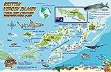 British Virgin Islands Dive Map & Coral Reef Creatures Guide Franko Maps BVI Laminated Fish Card -