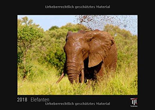 Elefanten 2018 - Timokrates Wandkalender, Bilderkalender, Fotokalender - DIN A3 (42 x...