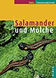 Salamander und Molche (Datz Terrarienbücher)
