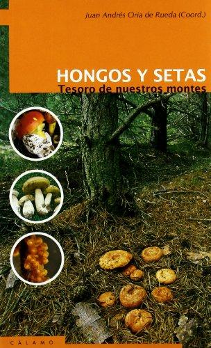 Esta obra ofrece una información original, detallada y precisa sobre los hongos silvestres más destacados de nuestros campos y bosques. Incluye descripciones de cada especie, así como los lugares concretos donde aparecen, información sobre utilidades...