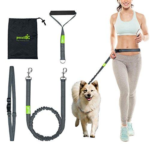 Pecute Hundeleine Bauchleine hund jogging leine Reflektierende Elastische Nylonband 1.5 m mit verstellbarem Hüftgurt und Handgirff (Grau + Grün)