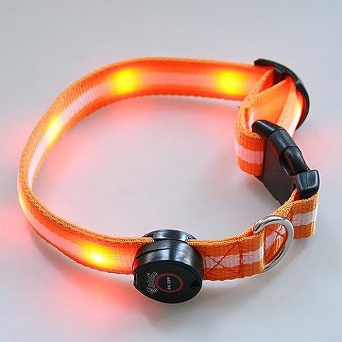 syalex (TM) LED luminoso in nylon Pet Dog Collar notte sicurezza LED luminoso LED lampeggiante Glow in the Dark Electric Pets Gatto Collare per cane, Orange
