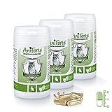 AniForte Zeckenschild natürlicher Zeckenschutz 180 Kapseln Sparpack 4 - Naturprodukt für Katzen - (Qualitäts-ID: 506 Z 02)