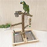Myyxt Parrot Toys Arrampicata campo da giuoco Bird shelf legno pepe swing stand