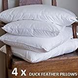 Night Zone Lot de 4 oreillers en plumes de canard Qualité...