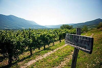 Vipava 1894 Rotwein Cabernet Sauvignon 2017, von Hand gelesener trockener roter Wein (6 x 0,75 l)