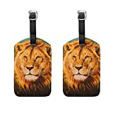 COOSUN The Lion Of Judah Luggage Tags Travel Labels Tag Name Card Holder for Baggage Suitcase Bag Backpacks, 2 PCS