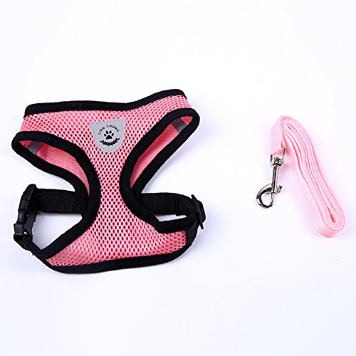 TOOGOO(R) Pretty Cute Little Dog Harness Collar Pet Supplies Dog Leash Lead Set (Pink, M)
