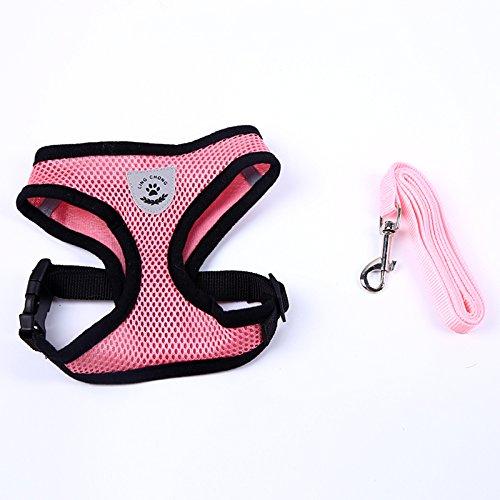 TOOGOO(R) Pretty Cute Little Dog Harness Collar Pet Supplies Dog Leash Lead Set (Pink, M)
