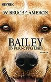 Bailey - Ein Freund fürs Leben: Ich gehöre zu dir - Buch zum Film - Roman