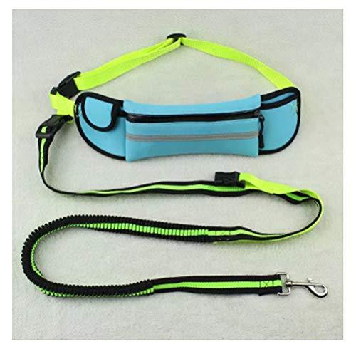 BEN-YI Pet Leine Seil Pet Sport Zugseil reflektierende Wasserdichte Laufseil Multi-Funktion Traktion heraus dehnbar -Haustierleine (Farbe : Water Blue) -
