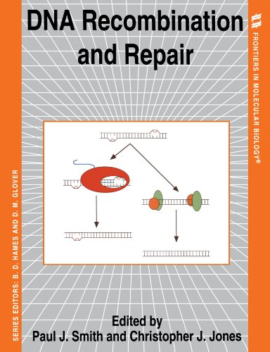 DNA Recombination and Repair (Frontiers in Molecular Biology)