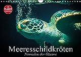 Meeresschildkröten. Nomaden der Ozeane (Wandkalender 2019 DIN A4 quer): Die bedrohten Überlebenskünstler und Nomaden unserer Weltmeere (Geburtstagskalender, 14 Seiten ) (CALVENDO Tiere)
