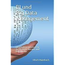 BI und Big Data Management: Informationsweisheit für Architekten, Berater und Entscheider