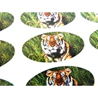 Pack of 48 Tiger Seals , 40x20mm Oval Seal Labels, Stickers for Gift Wrapping, Presents, Envelopes, Bags or Cards