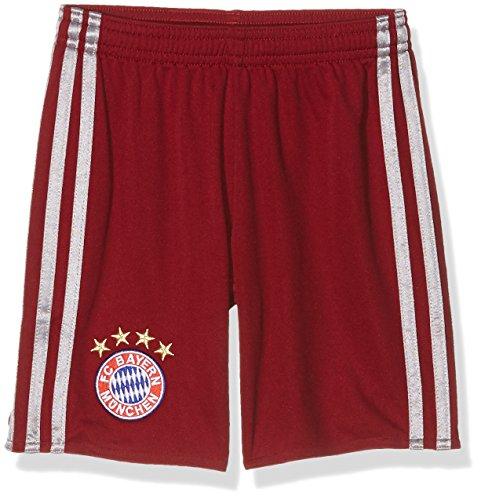 Adidas Bayern FC UCL SHO Y Pantalón Corto, Niños, Rojo/Gris, 11-12 años
