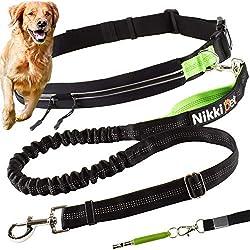 Sport Leine 2,0 m Jack /& Russell Hunde Joggingleine mit H/üftgurt schwarz-neongr/ün Hundeleine elastisch 1,5 m