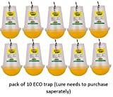 Chipku ECO Trap Economy Pack Pack of 10 Traps Without Lure for