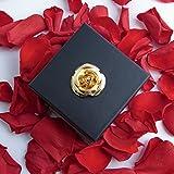 Konservierte Blume haltbar 3 Jahre in Blumengesteck Danksagung Geschenk für Frauen - langlebige Rosen von ROSEMARIE SCHULZ GmbH Heidelberg