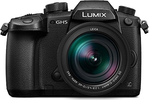 Panasonic-Lumix-DMC-GH5-Leica-12-60mm-F28-F40-MILC-203MP-Live-MOS-5184-x-3888Pixeles-Negro-Cmara-digital-203-MP-5184-x-3888-Pixeles-Live-MOS-Full-HD-Pantalla-tctil-Negro