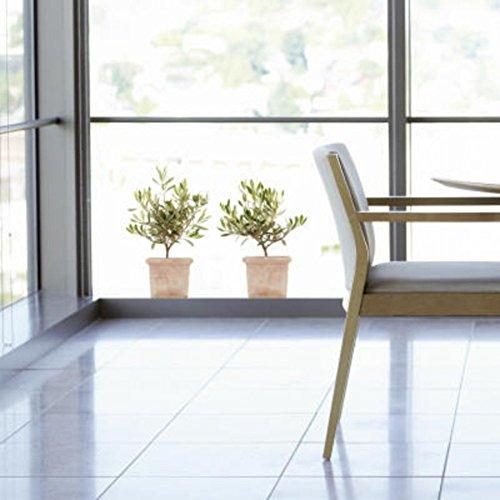 Home Stickers HOWI 040 Fenstersticker Olivenbäume