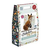 Crafty Kit Company The Fabulous Mr Foxy Needle Felting Kit Fox Craft Felt Kit for Children and Adults
