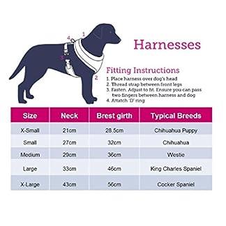 Doodlebone Airmesh Dog Harness, Charcoal, X-Small 16