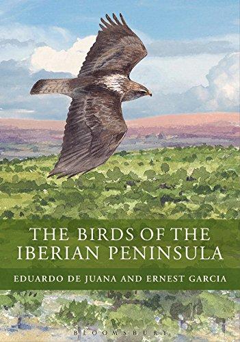 birds-of-the-iberian-peninsula