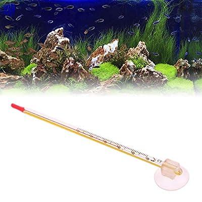NKYSM Aquarium Thermometer Glas mit Sauger für Aquarium Reptil Box Supplies