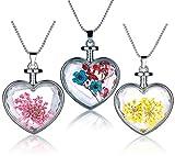 Yumilok Mehrfarbige Trockene Blumen Transparent Herz/Rund Anhänger Halskette Legierung Glas Flasche Kettenänhanger für Damen Mädchen (Multi-C)