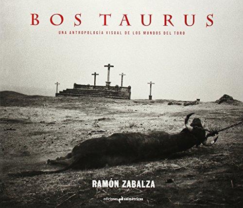 Bos Taurus (Fotografia)