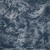 Fond en tissu walimex 2,8x5,8 m graphite