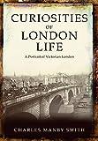 Curiosities of London Life: A Portrait of Victorian London