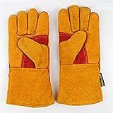 QYLOZ Verschleißfeste Handschuhe Kaltlagerung Niedrigtemperaturbeständige Handschuhe Kalt- und...